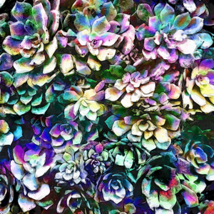 Colorful Abstract Plants