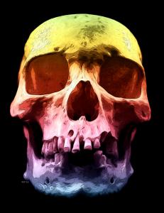 Pop Art Skull Face