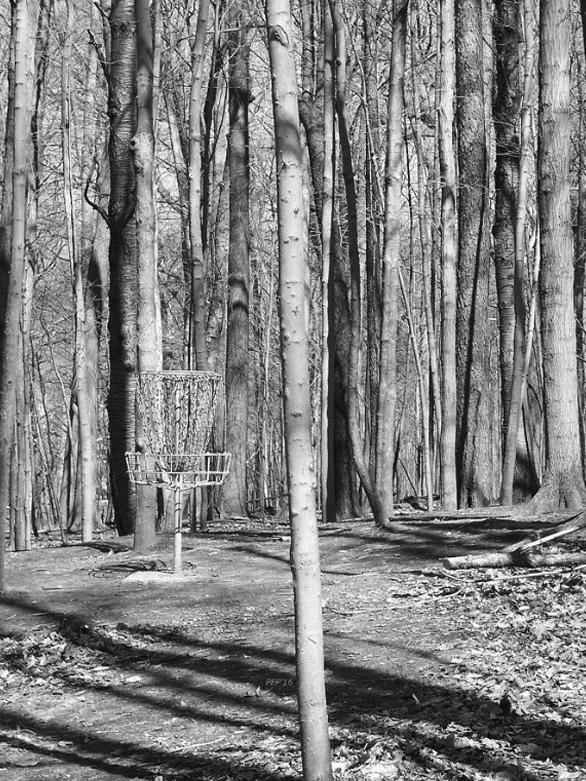 Black And White Disc Golf Basket