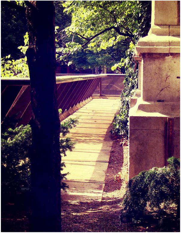 University of Michigan Shortcut