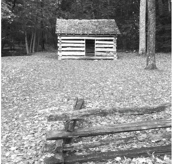 Vintage Black And White Cabin
