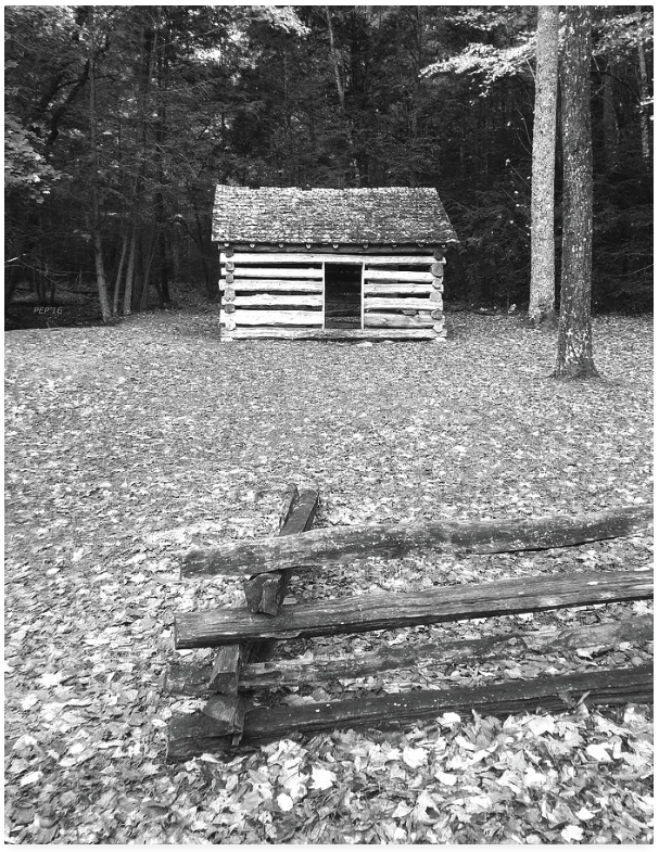 Vintage Black And White Cabin