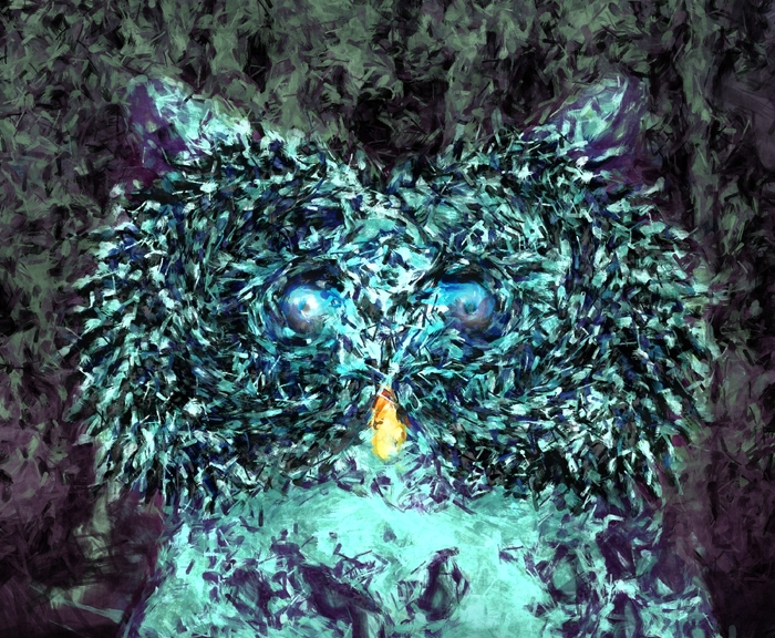 Blue Owl At Night