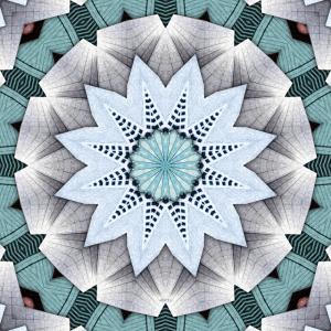 Turquoise Layers Mandala