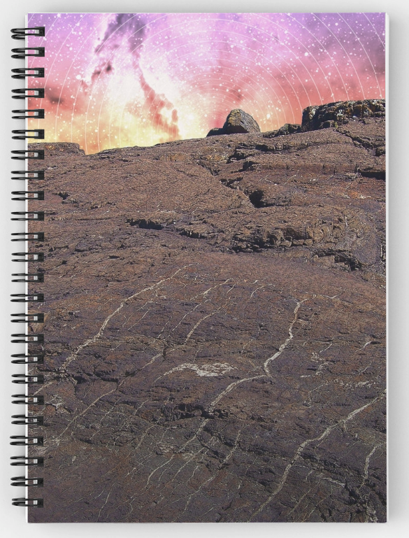 Outer Space Spiral Notebook
