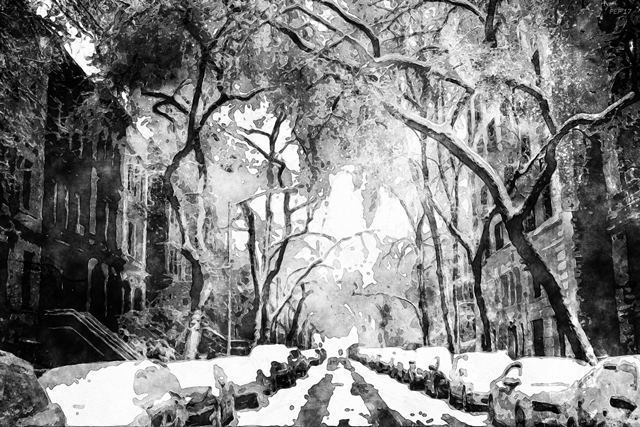 Winter Snow In The City