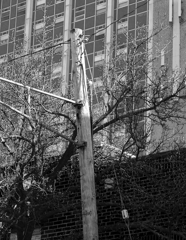 Old Telephone Pole