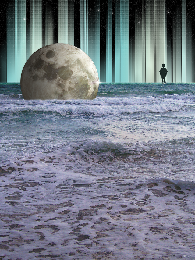 Dreaming At High Tide