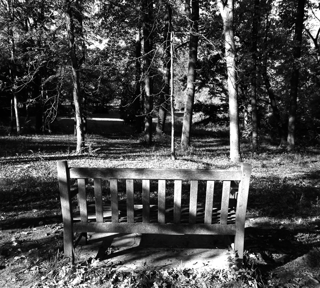 Black And White Bench