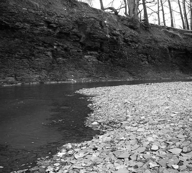 Black And White Rocky Riverbed