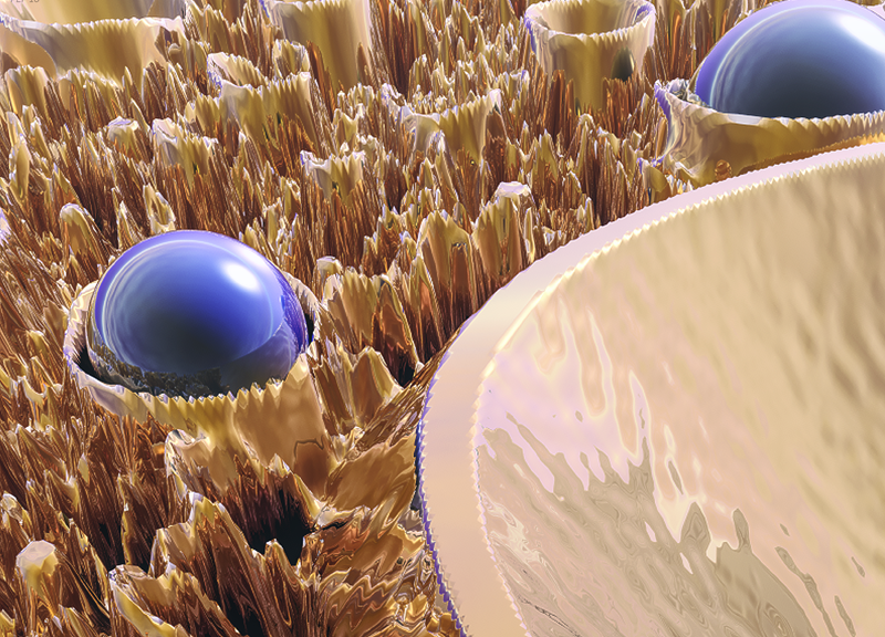 Macro Fractal With Blue Spheres