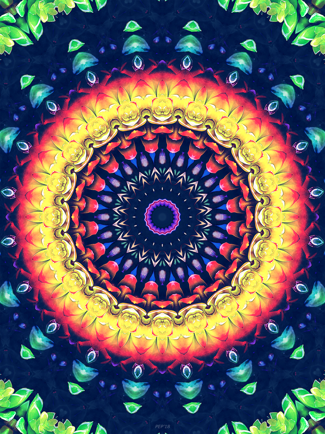 Colorful Flower Mandala