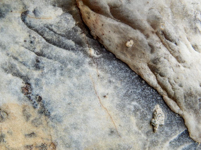 Surface of Rock