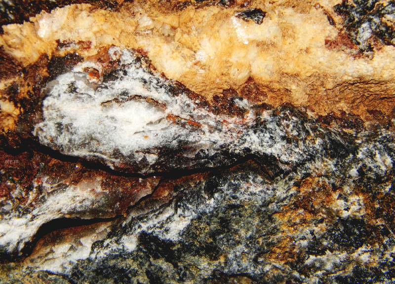 Macro Rock
