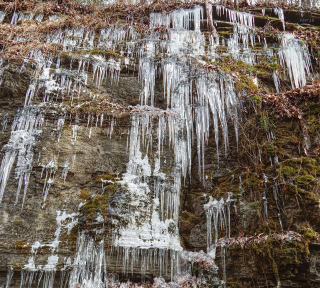Tennessee Icicles