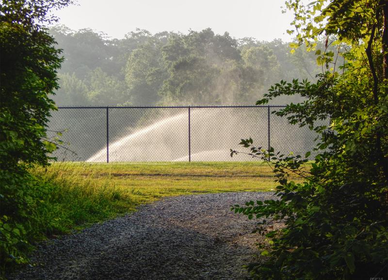 Sprinklers Behind Fence