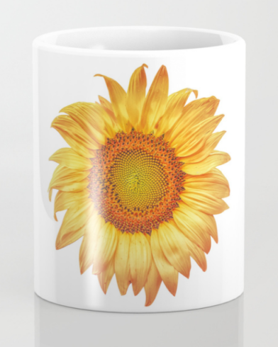 Summer Sunflower