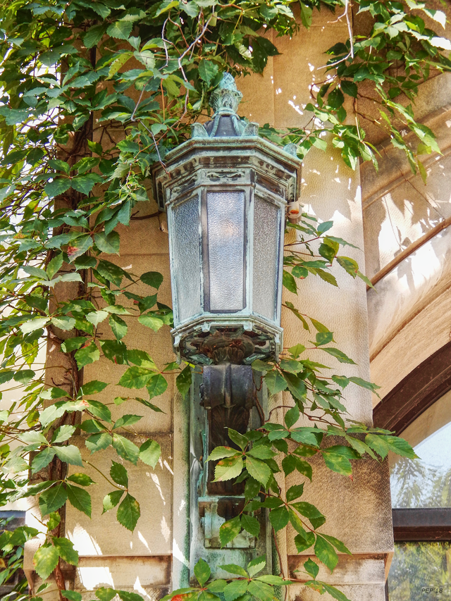 Lantern Light With Ivy