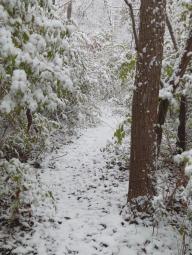nov18_snow_day2