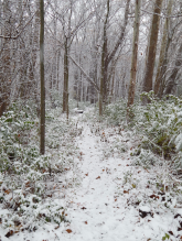 nov18_snow_day3