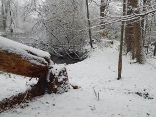 nov18_snow_day5