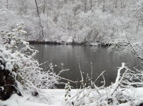 nov18_snow_day6