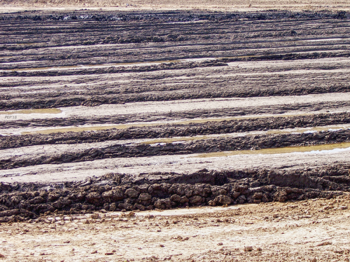 Field of Mud