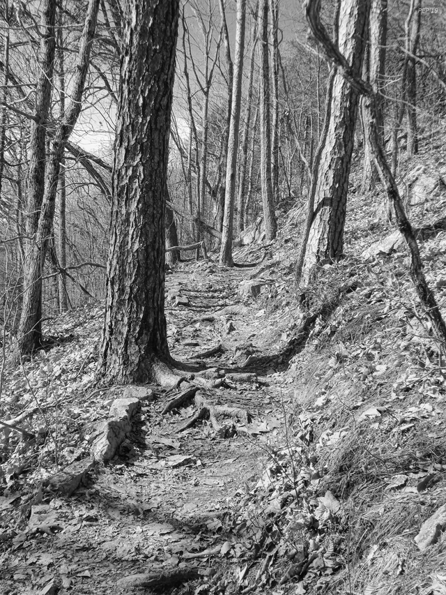 Black And White Mountain Trail
