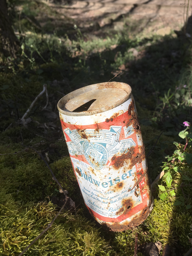 Old Beer Can