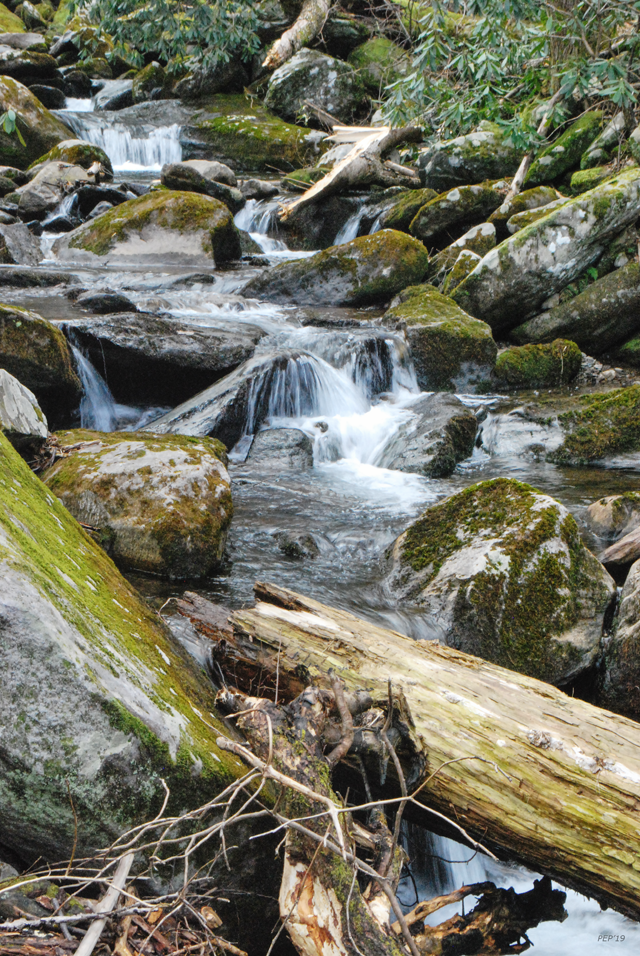 Cascading Mountain Stream
