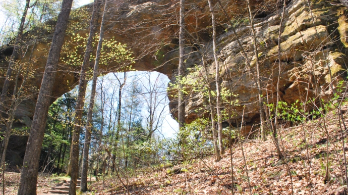 Twin Arches At Big South Fork National River & Recreation Area
