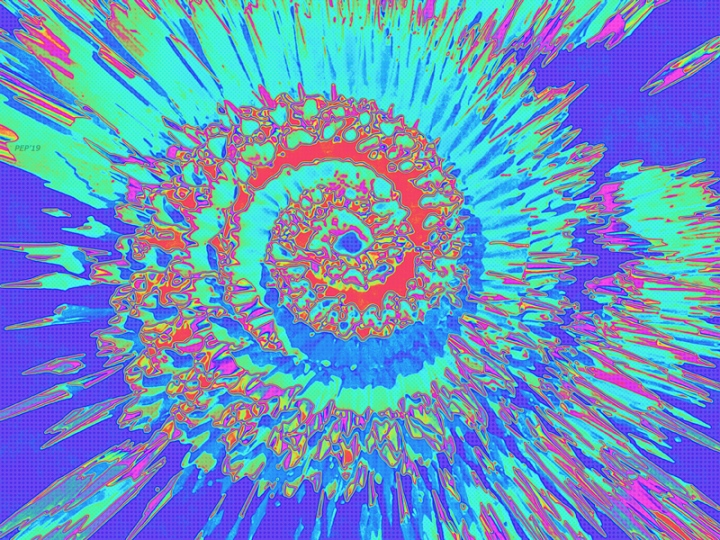 Pop Art Nautilus Fractal
