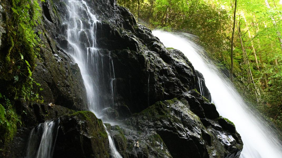 Waterfall near Cades Cove, TN