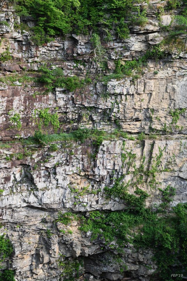 Cane Creek Falls Gorge