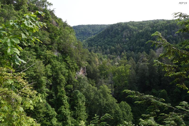 Gorge at Fall Creek Falls